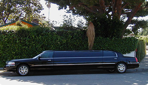 Stretch Limousine CT