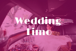 wedding limo ct
